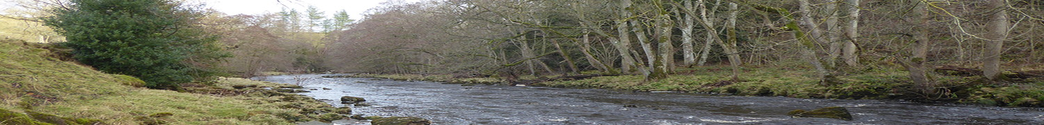 River Greta at Brignall